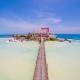 Mía Reef Isla Mujeres